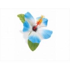 ELECTRA KWIATEK BLUE HAWAII 328631
